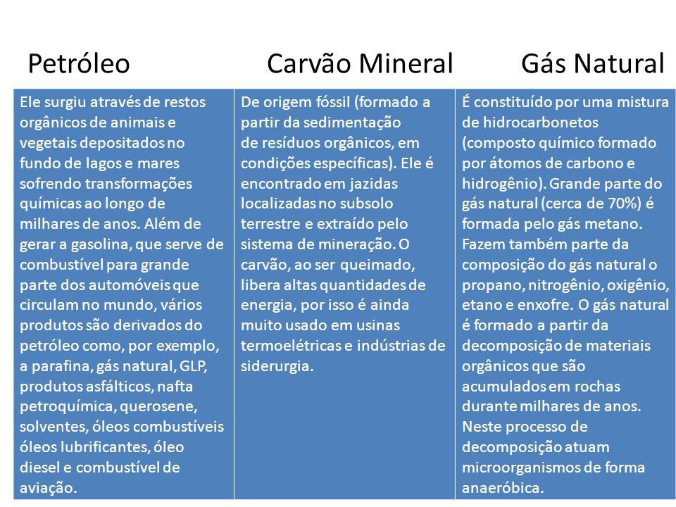 Petróleo Carvão Mineral Gás Natural