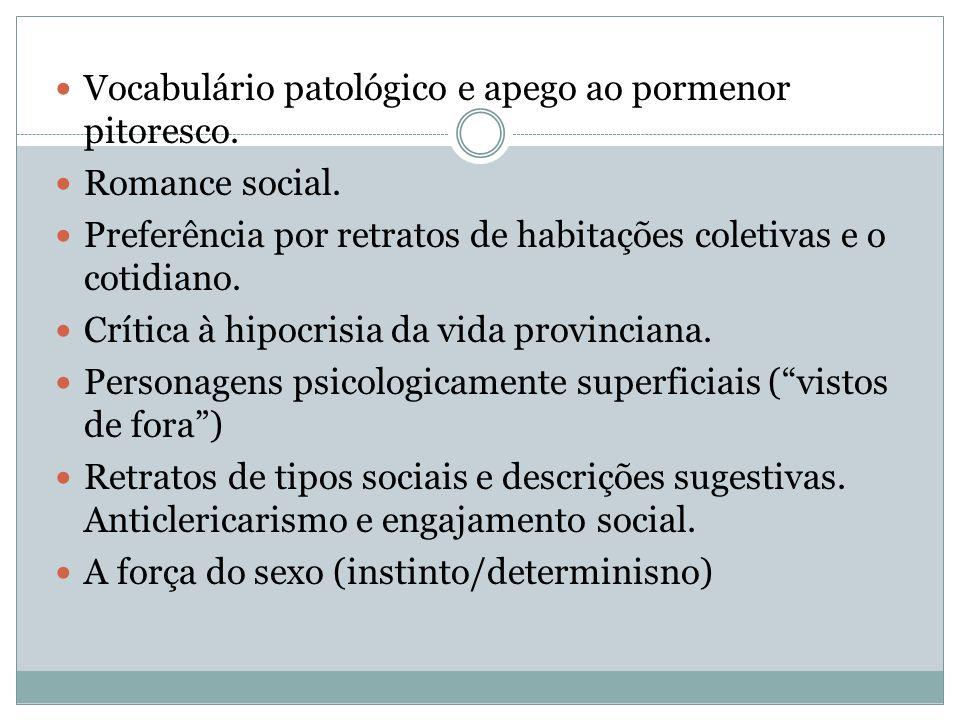 Vocabulário patológico e apego ao pormenor pitoresco.