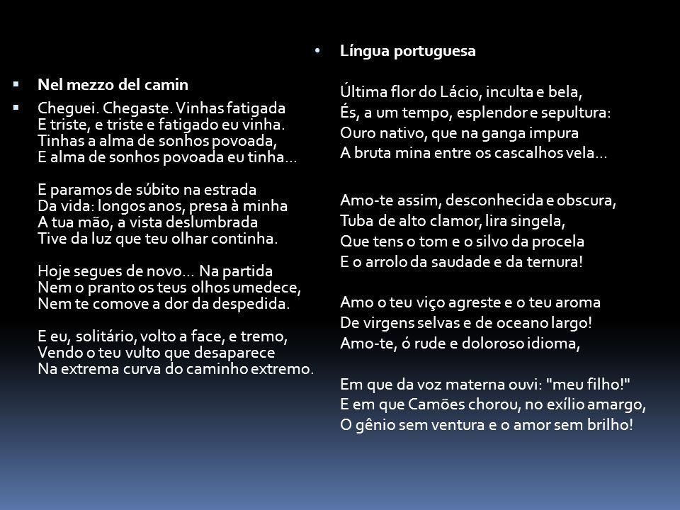 Língua portuguesa Última flor do Lácio, inculta e bela, És, a um tempo, esplendor e sepultura: Ouro nativo, que na ganga impura A bruta mina entre os cascalhos vela...