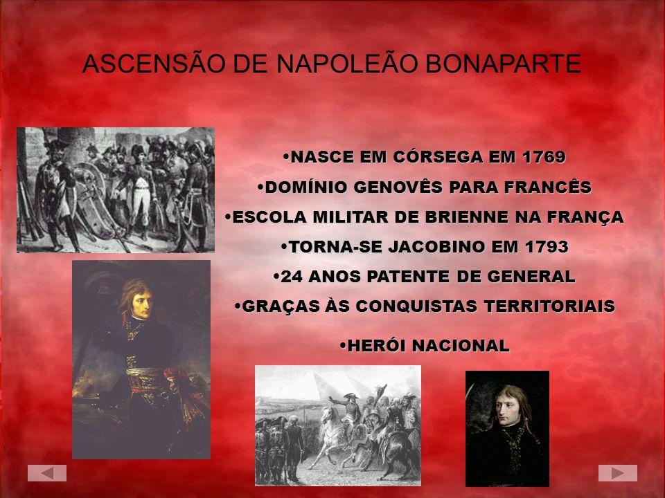 ASCENSÃO DE NAPOLEÃO BONAPARTE