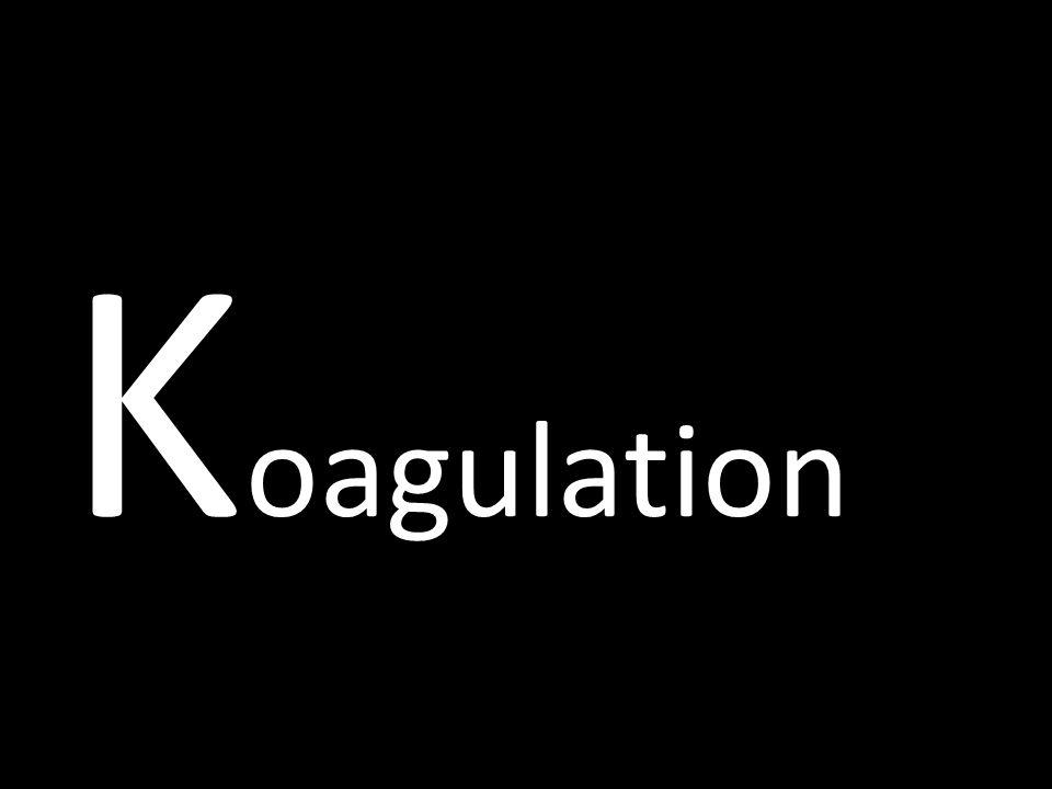 Koagulation dinamarques 4