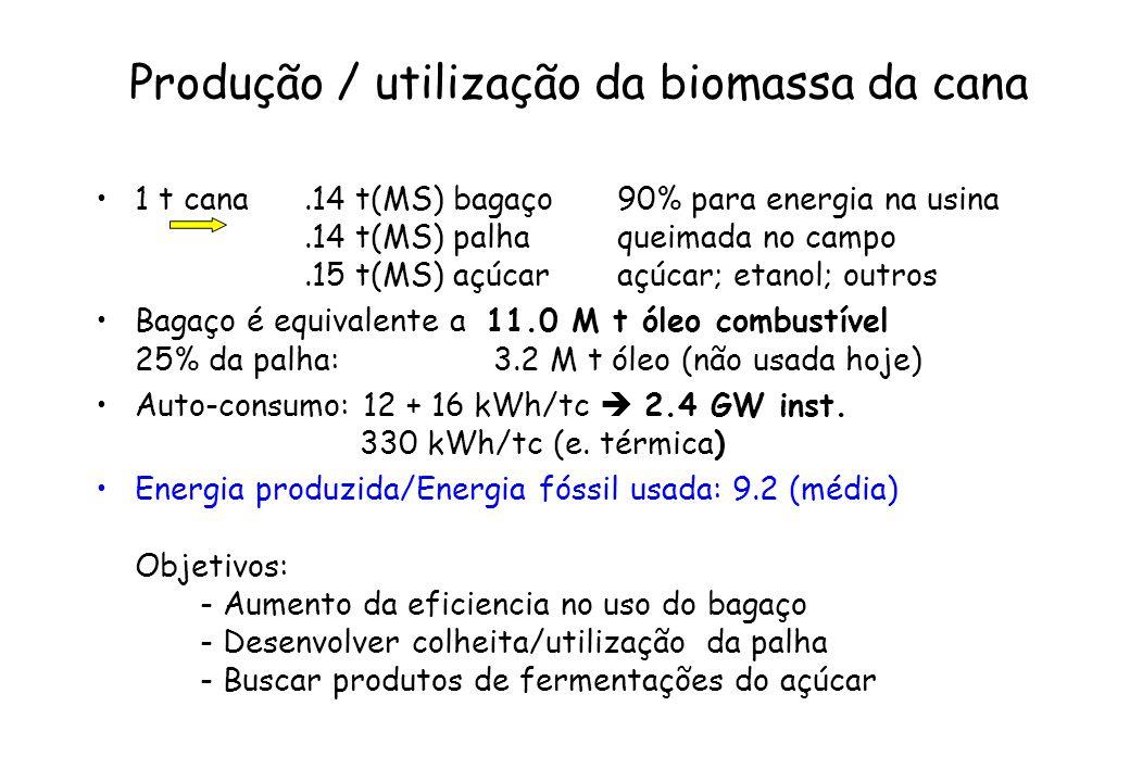 Produção / utilização da biomassa da cana