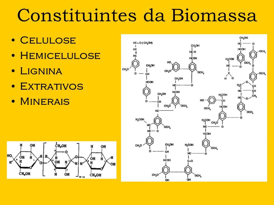 Constituintes da Biomassa
