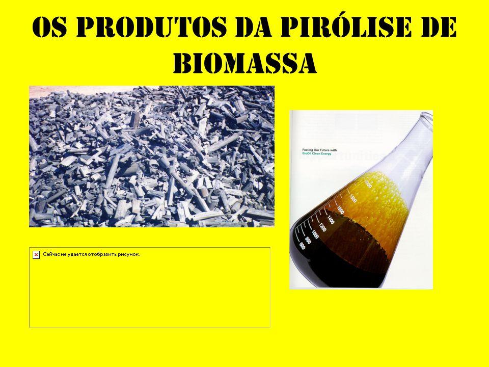 Os Produtos da Pirólise de Biomassa