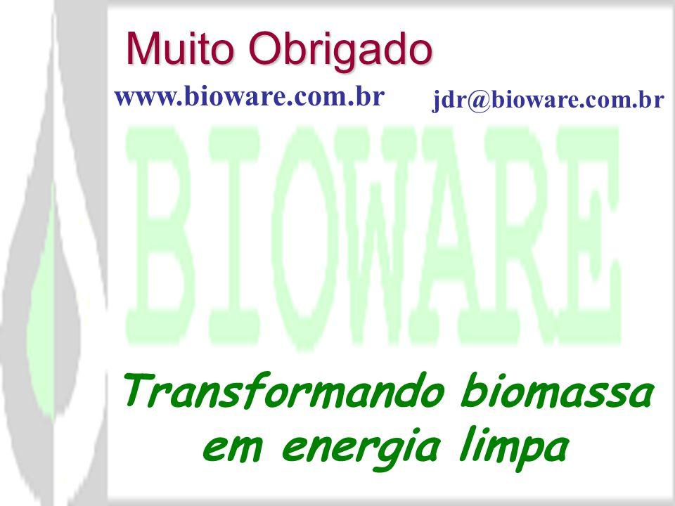 Transformando biomassa em energia limpa