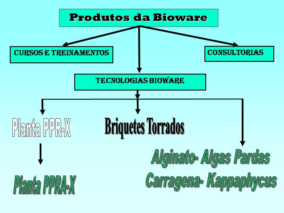Planta PPR-X Planta PPRA-X Produtos da Bioware Briquetes Torrados