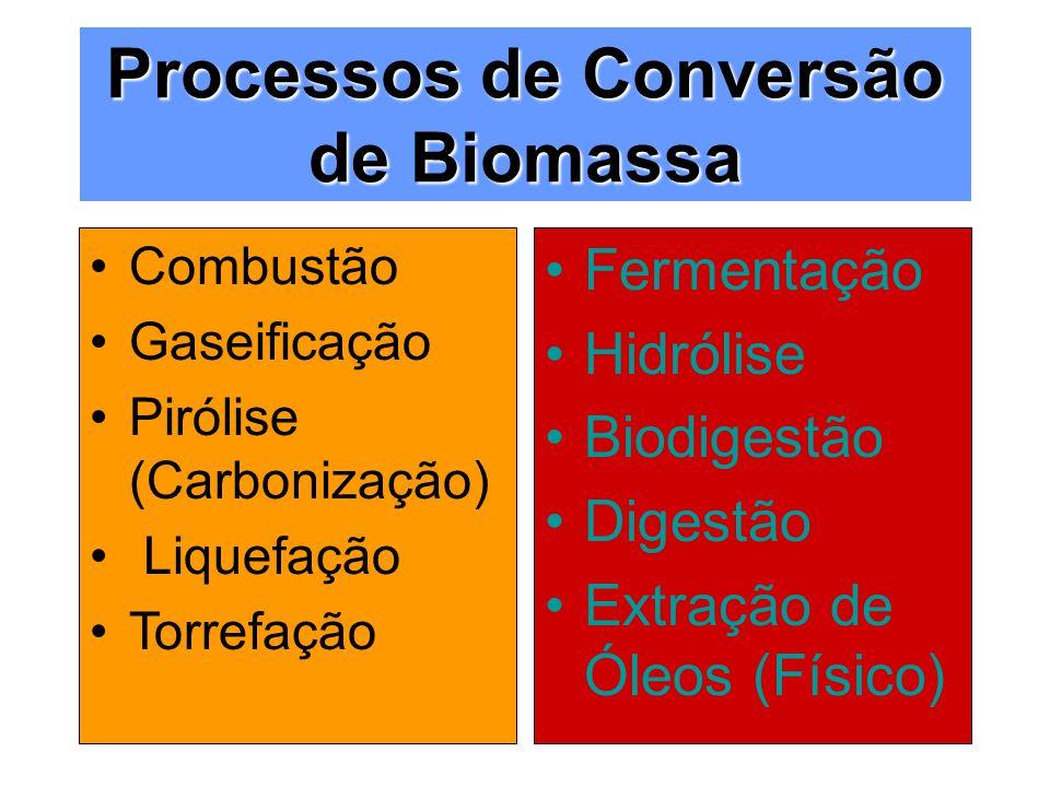 Processos de Conversão de Biomassa