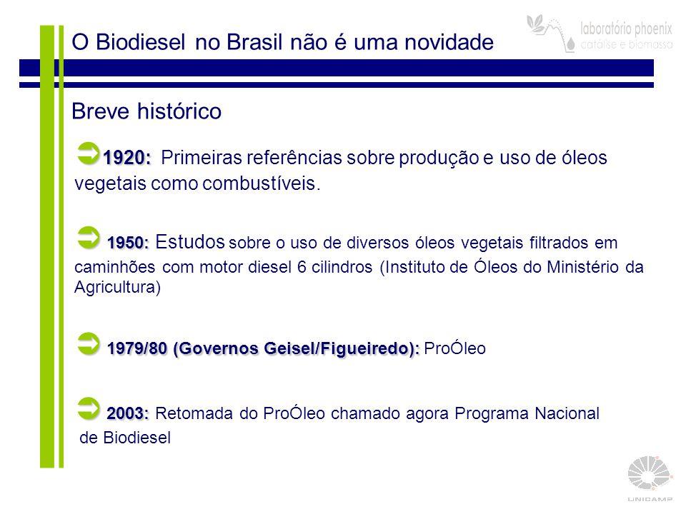  1979/80 (Governos Geisel/Figueiredo): ProÓleo