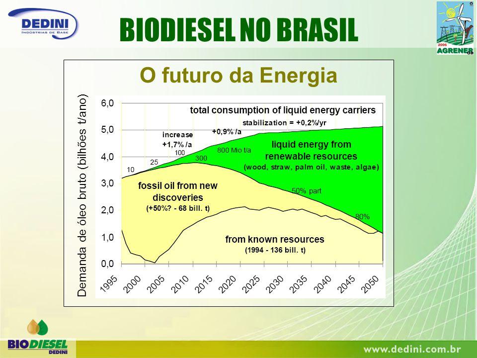 BIODIESEL NO BRASIL O futuro da Energia