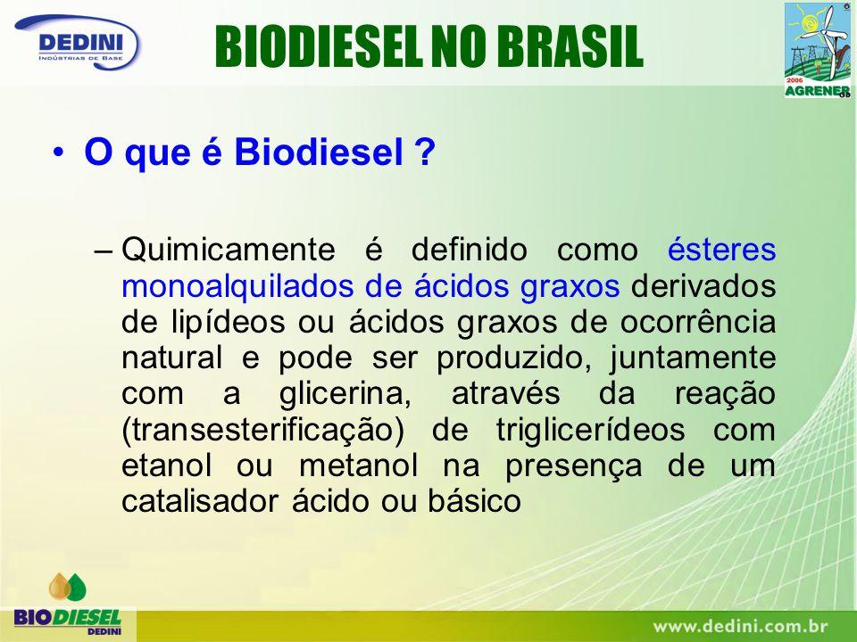 BIODIESEL NO BRASIL O que é Biodiesel