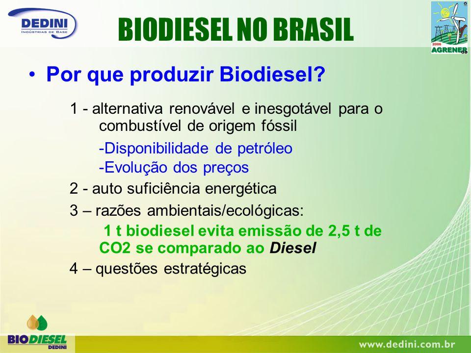 BIODIESEL NO BRASIL Por que produzir Biodiesel