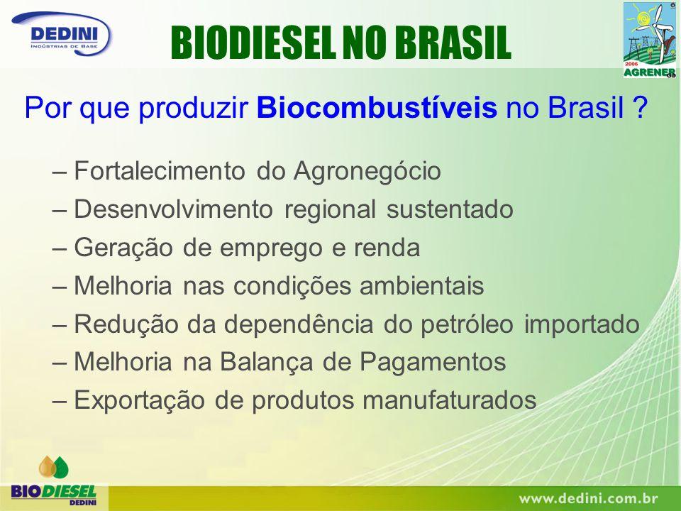 BIODIESEL NO BRASIL Por que produzir Biocombustíveis no Brasil