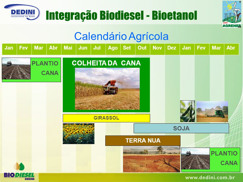 Integração Biodiesel - Bioetanol
