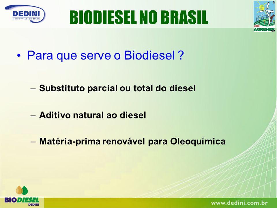 BIODIESEL NO BRASIL Para que serve o Biodiesel