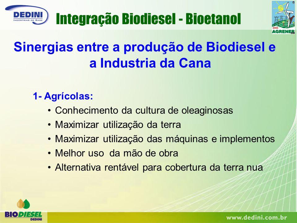 Sinergias entre a produção de Biodiesel e a Industria da Cana