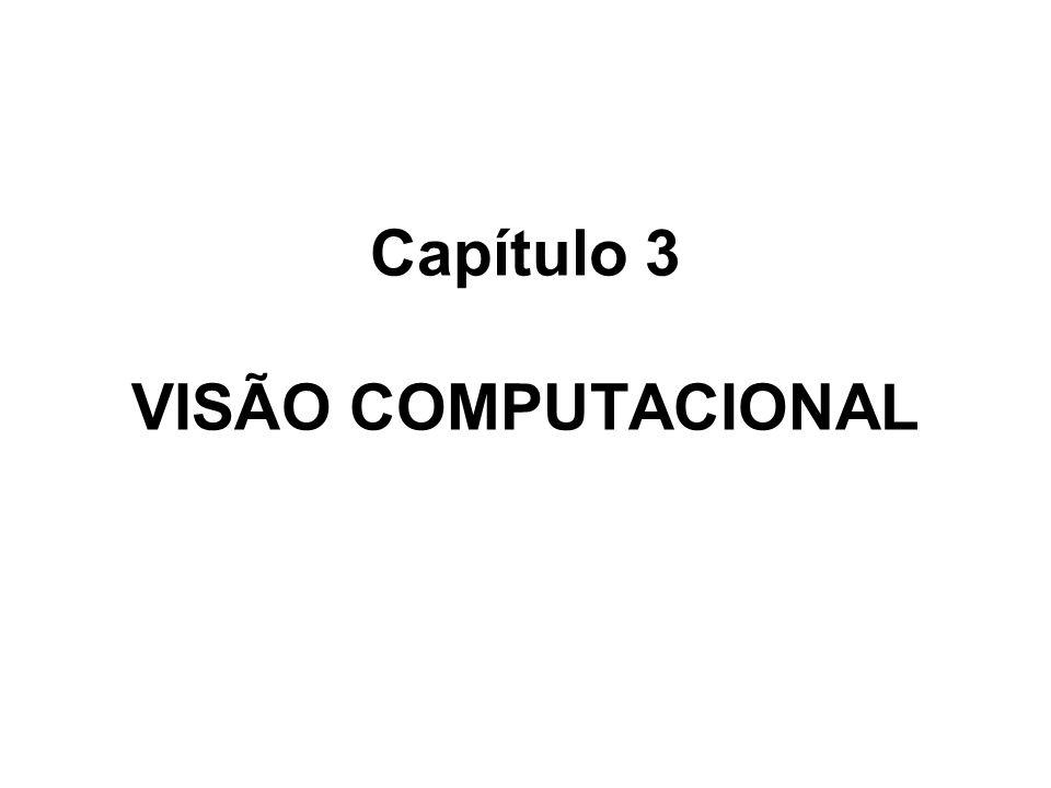 Capítulo 3 VISÃO COMPUTACIONAL