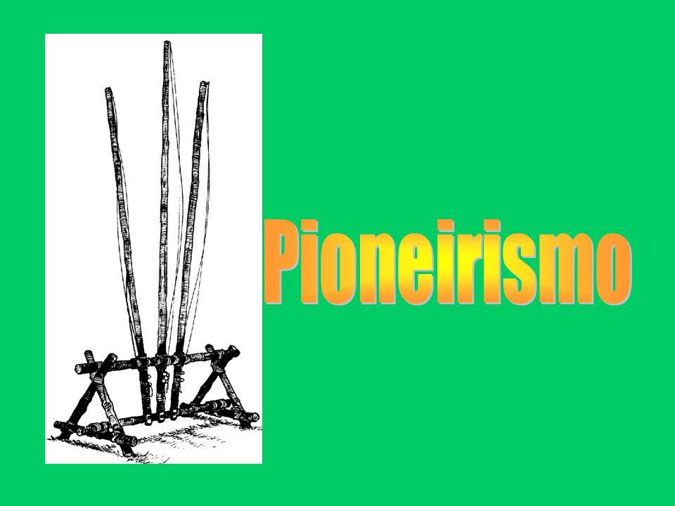 Pioneirismo