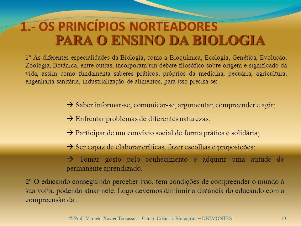 1.- OS PRINCÍPIOS NORTEADORES