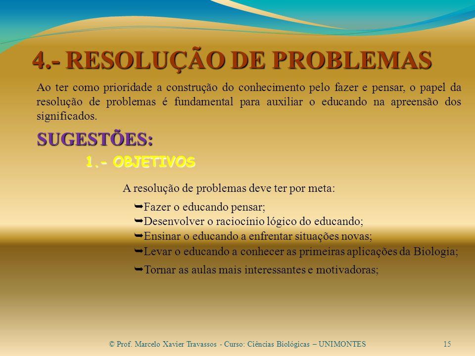 4.- RESOLUÇÃO DE PROBLEMAS