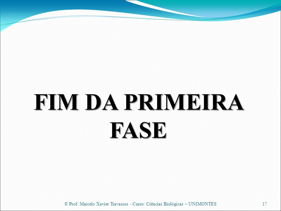 FIM DA PRIMEIRA FASE © Prof. Marcelo Xavier Travassos - Curso: Ciências Biológicas – UNIMONTES