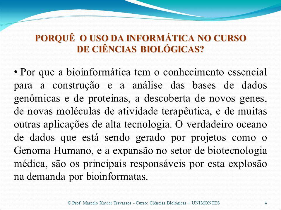 PORQUÊ O USO DA INFORMÁTICA NO CURSO DE CIÊNCIAS BIOLÓGICAS