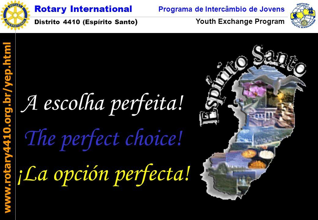 A escolha perfeita! The perfect choice! ¡La opción perfecta!