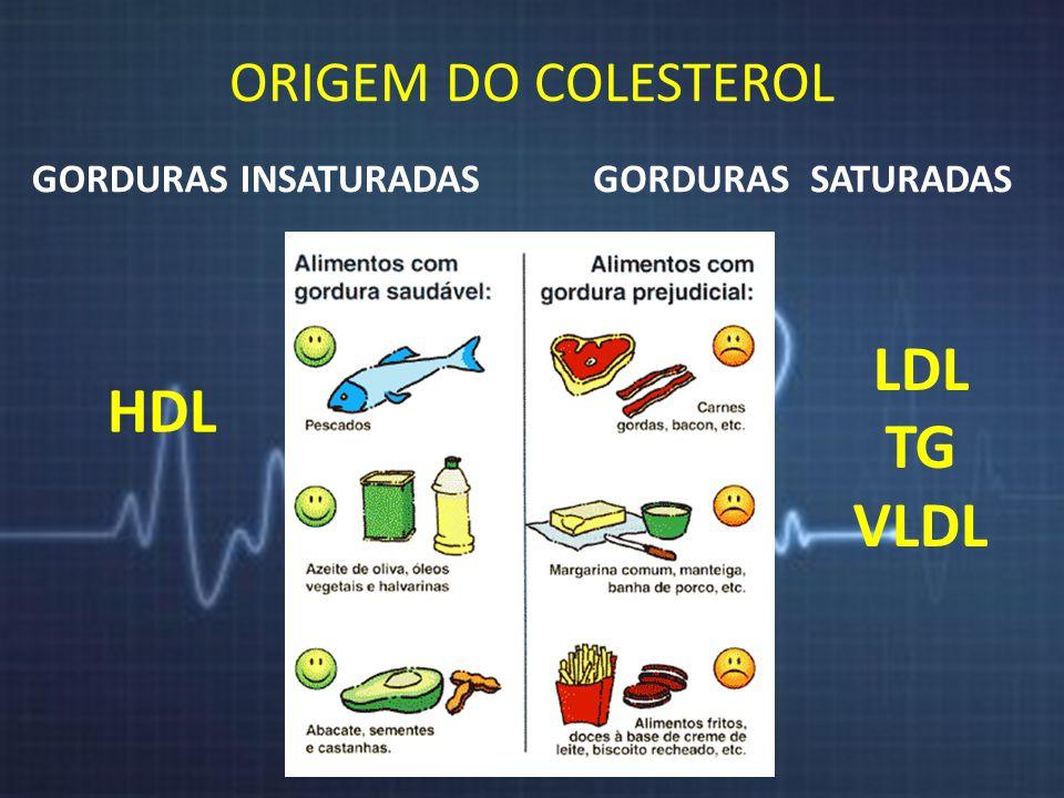 LDL HDL TG VLDL ORIGEM DO COLESTEROL GORDURAS INSATURADAS