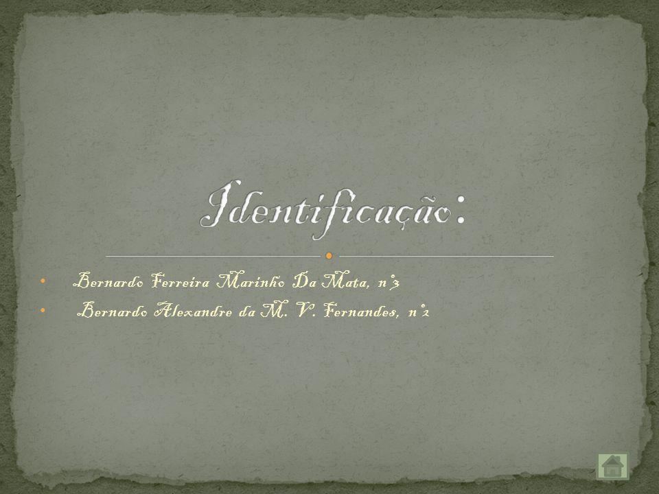 Identificação: Bernardo Ferreira Marinho Da Mata, nº3