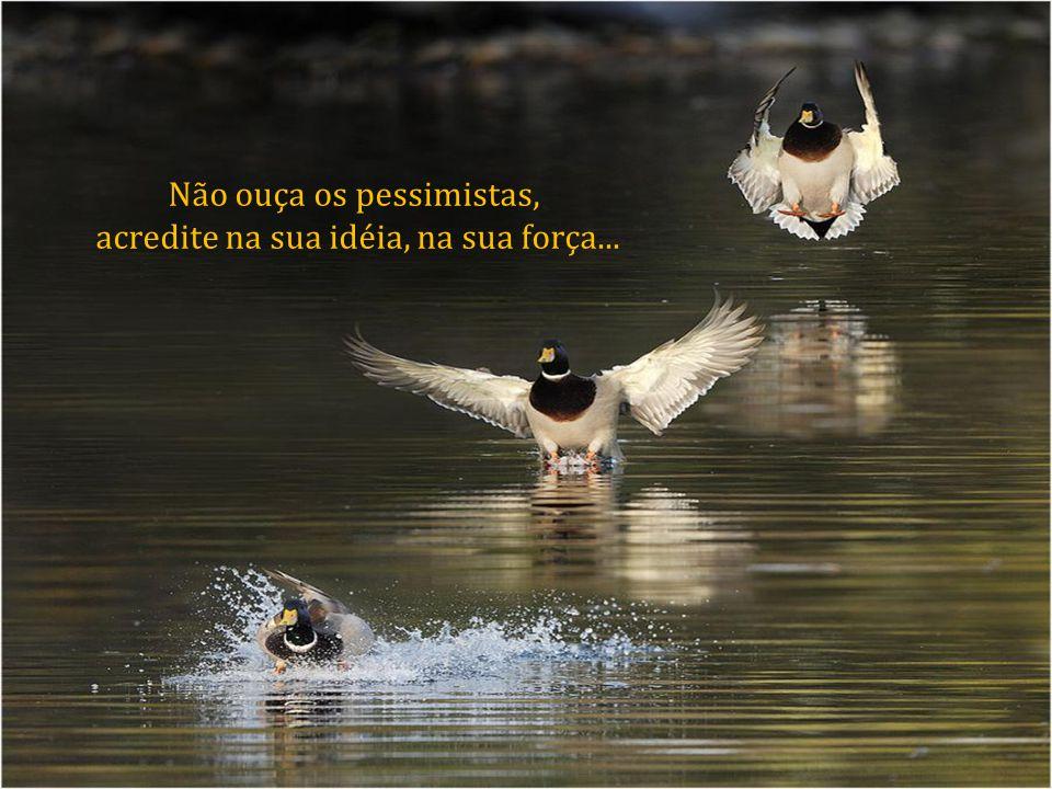 Não ouça os pessimistas, acredite na sua idéia, na sua força...