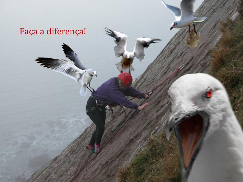 Faça a diferença!