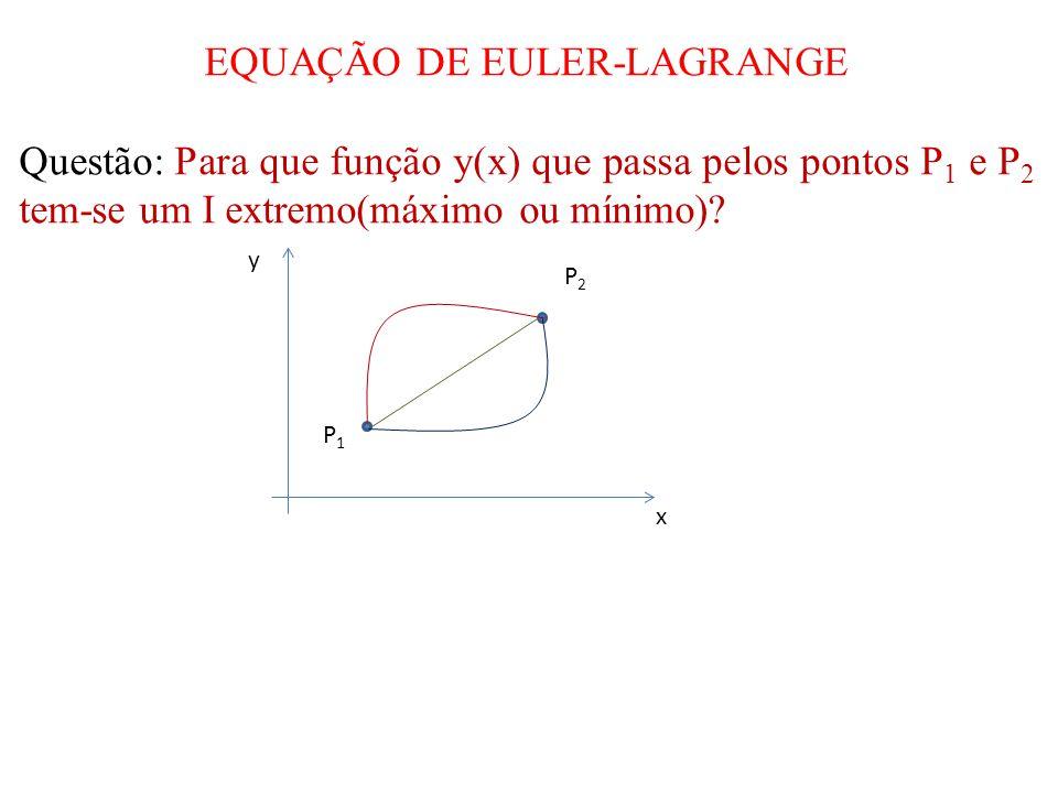 EQUAÇÃO DE EULER-LAGRANGE