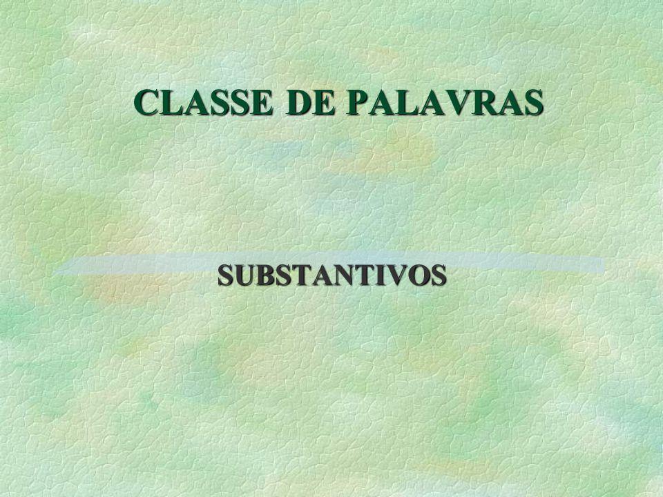 CLASSE DE PALAVRAS SUBSTANTIVOS