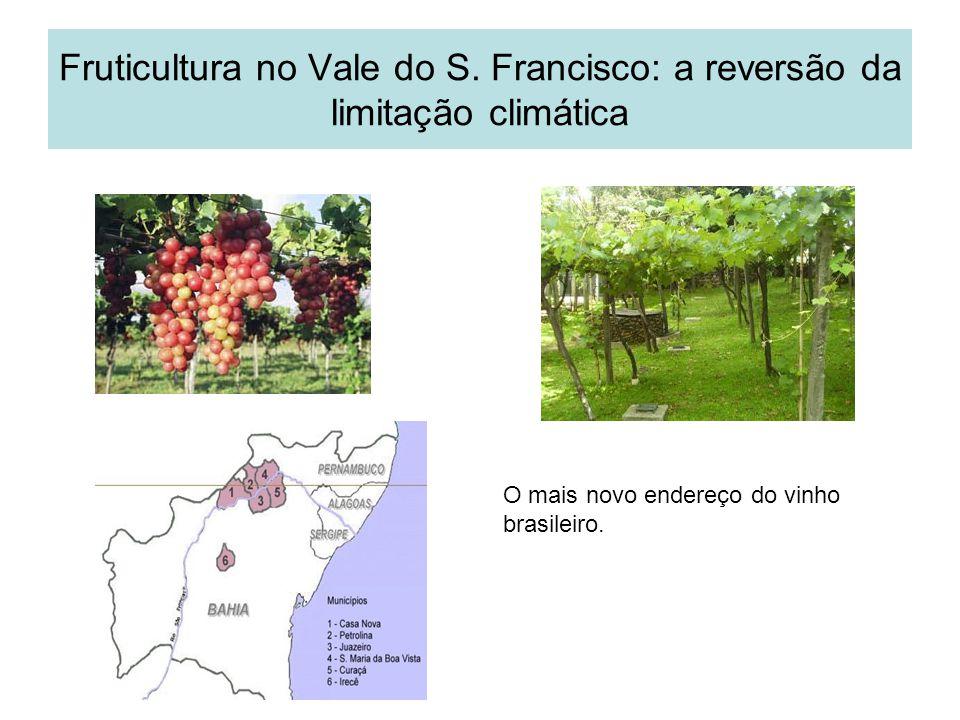 Fruticultura no Vale do S. Francisco: a reversão da limitação climática