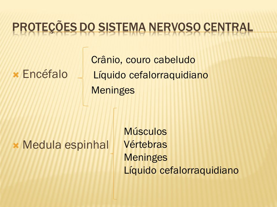 Proteções do sistema nervoso central