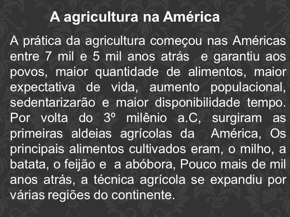 A agricultura na América