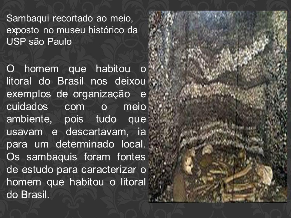 Sambaqui recortado ao meio, exposto no museu histórico da USP são Paulo