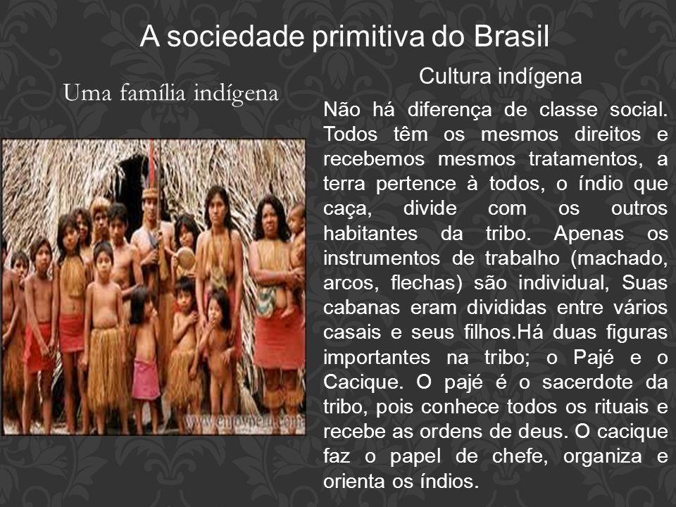 A sociedade primitiva do Brasil