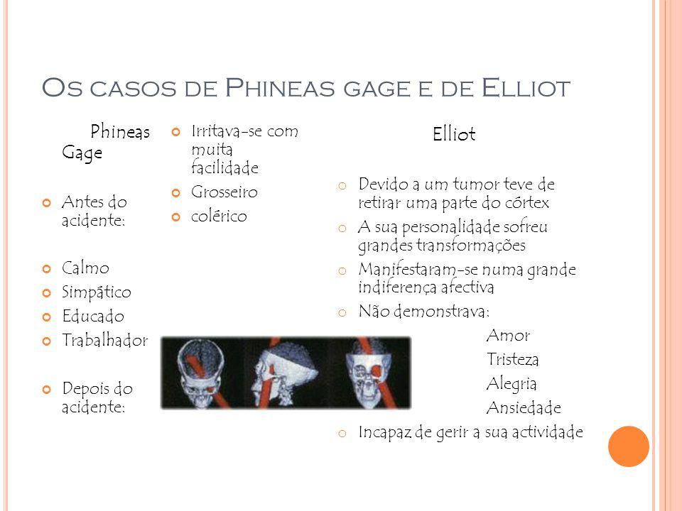 Os casos de Phineas gage e de Elliot