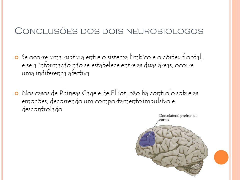 Conclusões dos dois neurobiologos