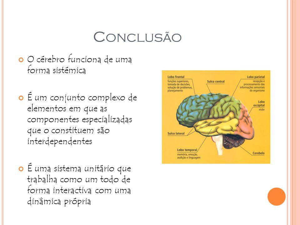 Conclusão O cérebro funciona de uma forma sistémica