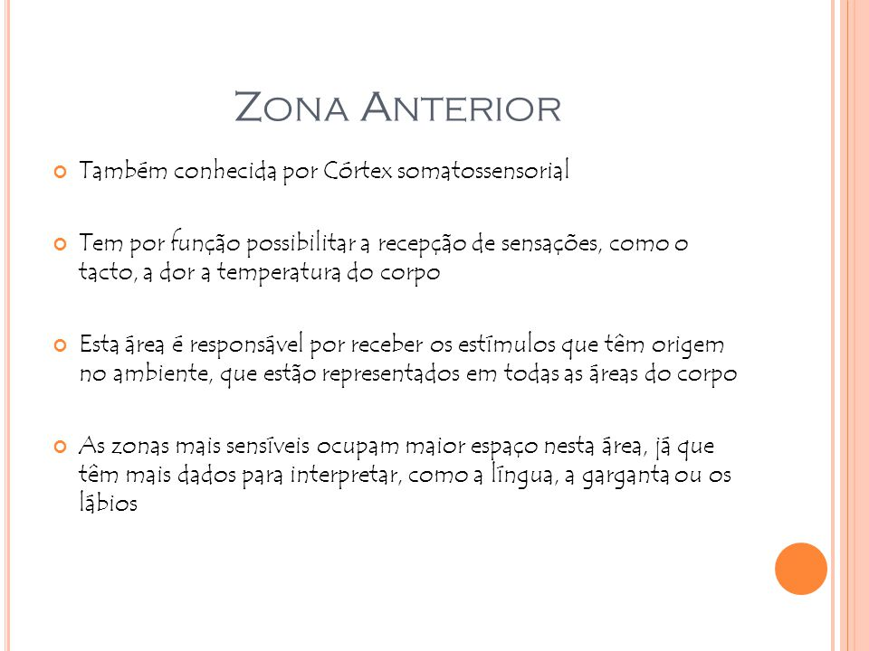 Zona Anterior Também conhecida por Córtex somatossensorial