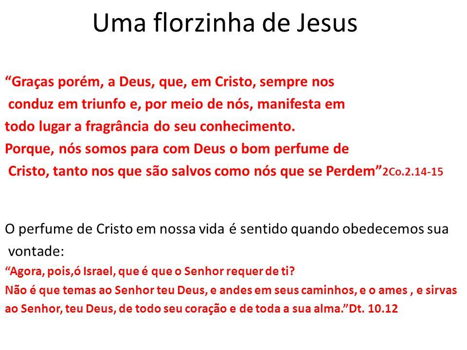 Uma florzinha de Jesus Graças porém, a Deus, que, em Cristo, sempre nos. conduz em triunfo e, por meio de nós, manifesta em.