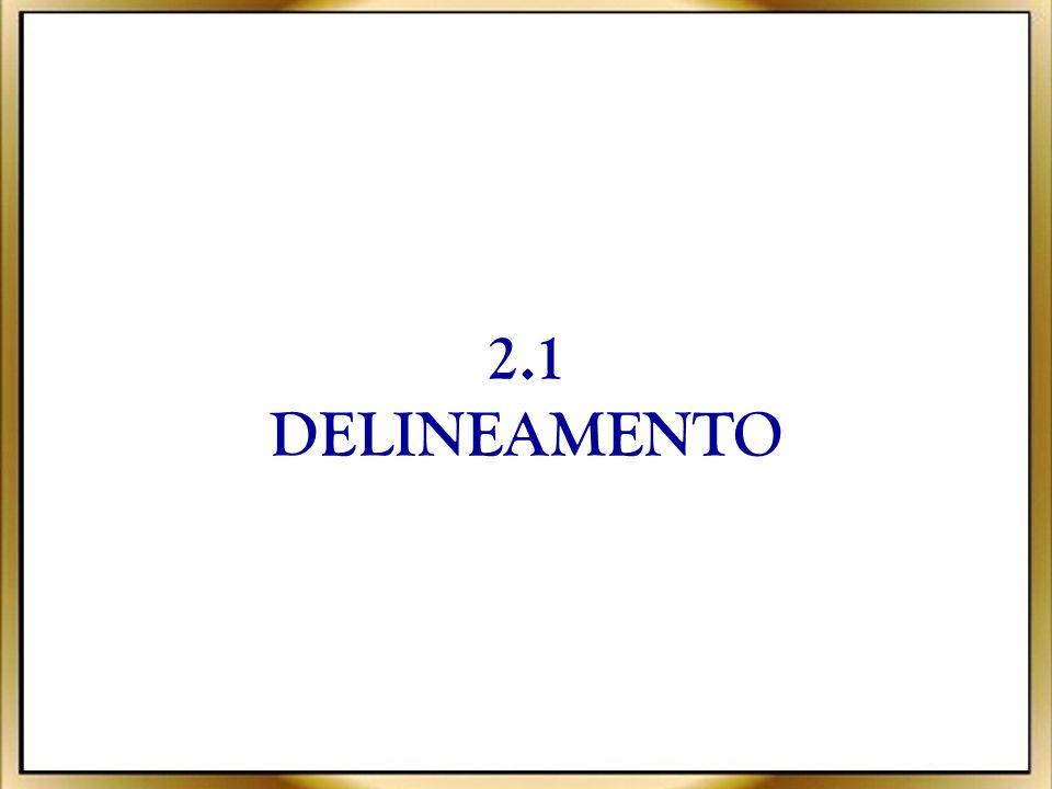 2.1 DELINEAMENTO