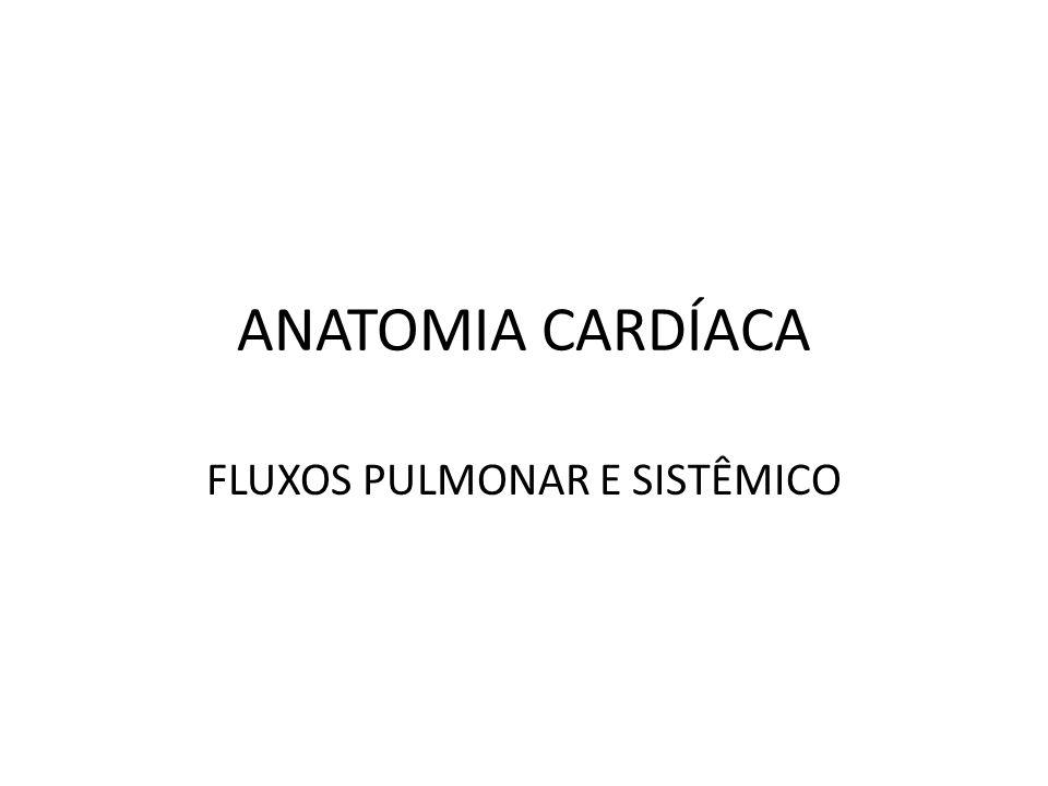 FLUXOS PULMONAR E SISTÊMICO