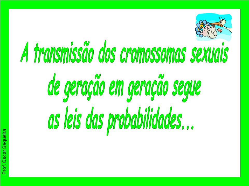 A transmissão dos cromossomas sexuais de geração em geração segue