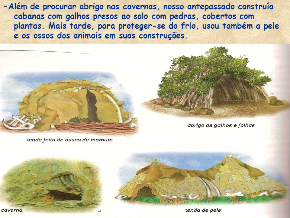 -Além de procurar abrigo nas cavernas, nosso antepassado construía cabanas com galhos presos ao solo com pedras, cobertos com plantas.