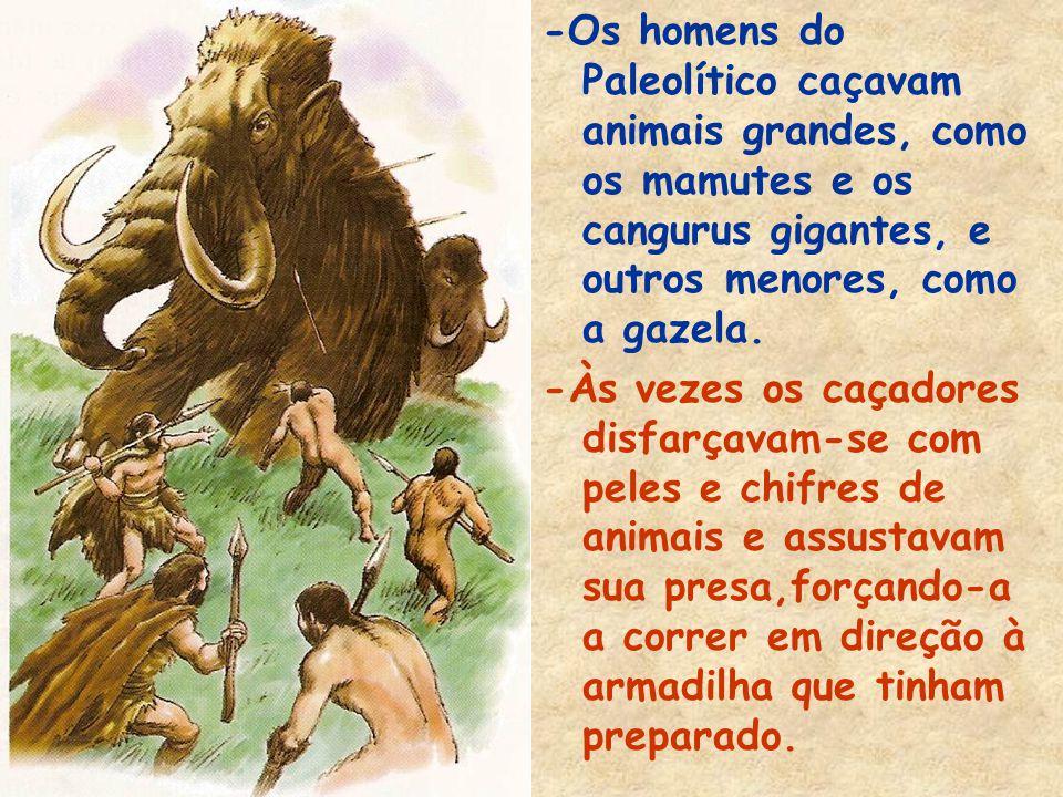 -Os homens do Paleolítico caçavam animais grandes, como os mamutes e os cangurus gigantes, e outros menores, como a gazela.