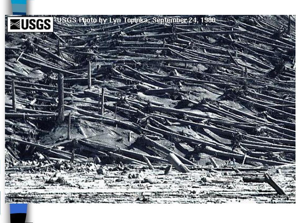 Efeito dum tsunami Fig.1 - Fonte: Site 5