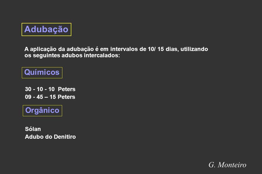 Adubação Químicos Orgânico G. Monteiro