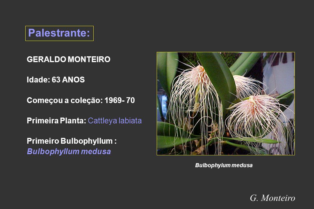 Palestrante: G. Monteiro GERALDO MONTEIRO Idade: 63 ANOS